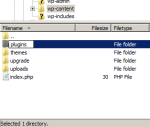 ftp client showing plugins folder